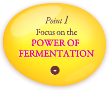 Point 1: Focus on the power of fermentation